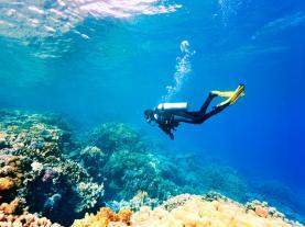 duikvakanties-voor-singles-naar-de-mooiste-duikplekken