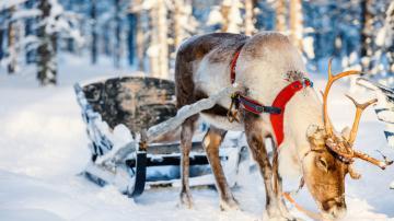 Kerst en Oudjaar vieren met onbekende singles? Gewoon doen!
