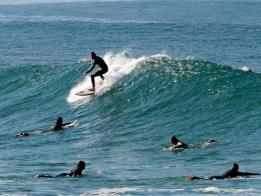 Singlereis Surfvakantie (HBO-WO) Ericeira, Portugal