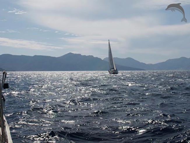 Singlereis Zeilvakantie Griekse eilanden