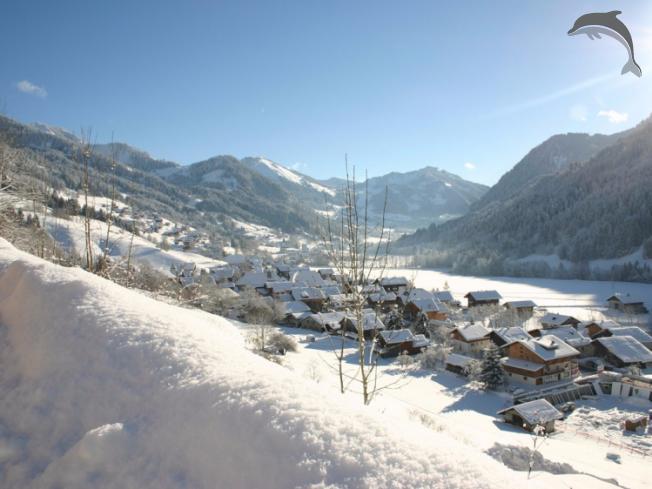 Singlereis Wintersport in Frankrijk en Zwitserland