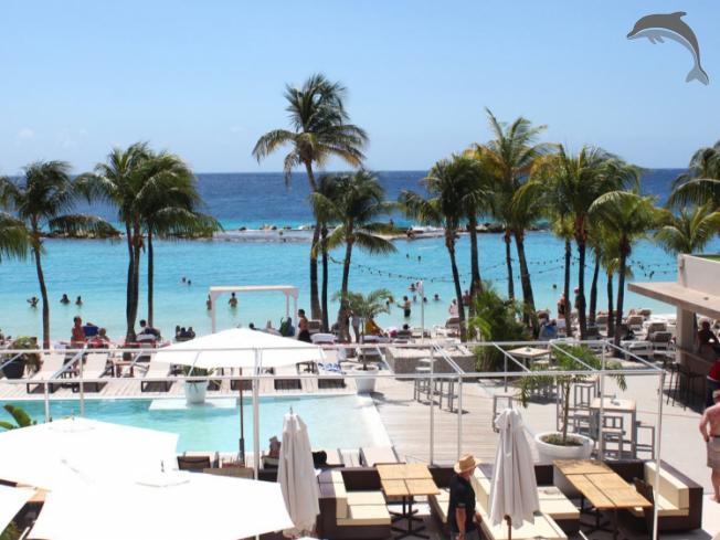 Singlereis Vier Kerst of Oudjaar (HBO-WO) op Curacao