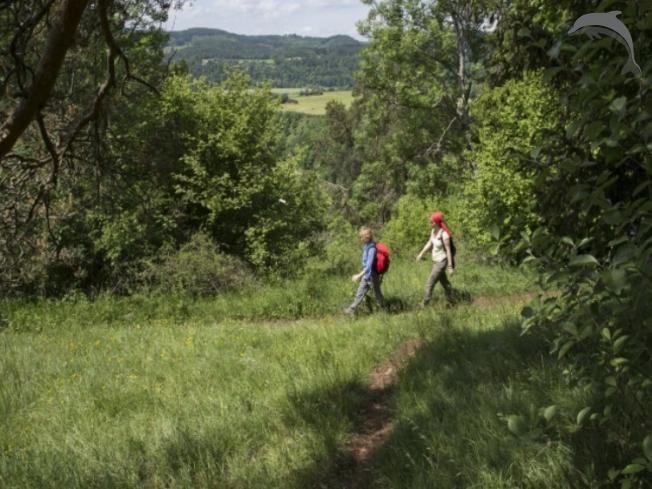 Groepsreis Rondreis Ontdek de Duitse Eifel