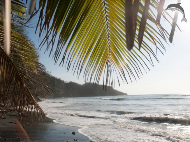 Singlereis Rondreis Authentiek Genieten Costa Rica