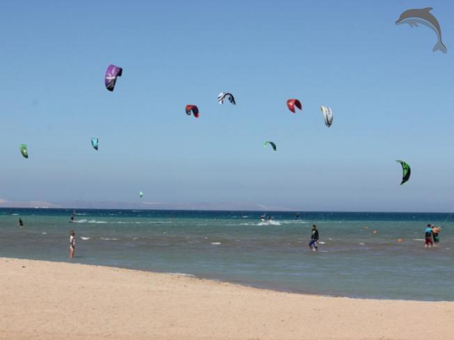 Singlereis Surfvakantie (HBO-WO) El Gouna, Egypte