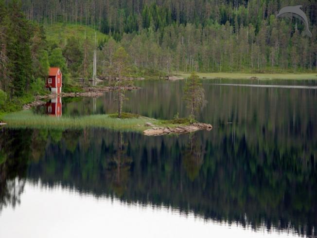 Groepsreis Actieve reis Avontuurlijke 8-daagse groepsreis Noorwegen