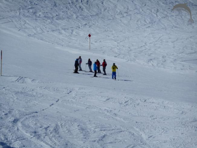 Groepsreis Skisafari Canada In de Rocky Mountains
