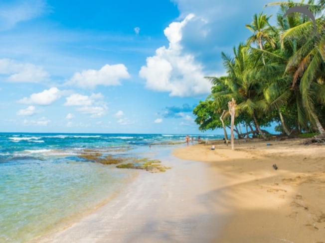 Singlereis Costa Rica Natuur & Strand